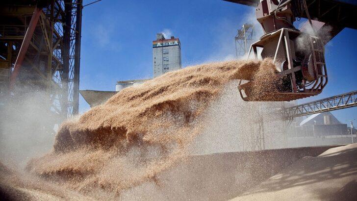 Los sojeros liquidaron US$ 3.500 millones en mayo, cifra récord para ese mes