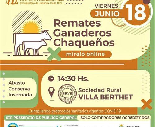 Villa Berthet: séptimo remate ganadero chaqueño de pequeños y medianos productores