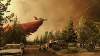 Canadá: declaran la emergencia por los incendios en el oeste
