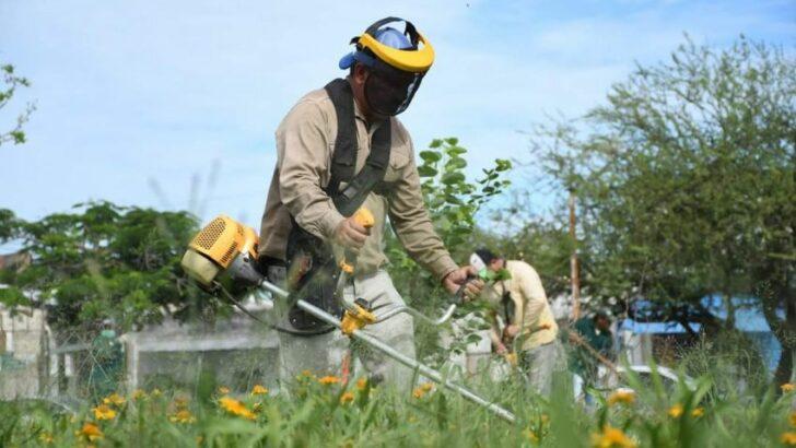 Saneamiento ambiental: la Secretaría de Desarrollo Territorial y Ambiente intensifica los trabajos en distintos puntos del área metropolitana