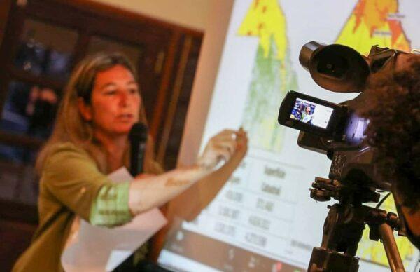 Bosques nativos: comienzan los talleres participativos de consulta de cara al nuevo mapa de ordenamiento territorial 2