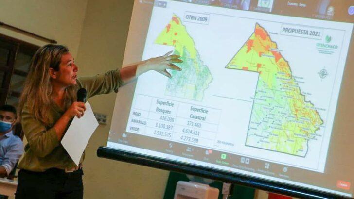 Bosques nativos: comienzan los talleres participativos de consulta de cara al nuevo mapa de ordenamiento territorial