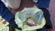 Cinturón Sur: Gendarmería secuestró 335 envoltorios con cocaína y marihuana