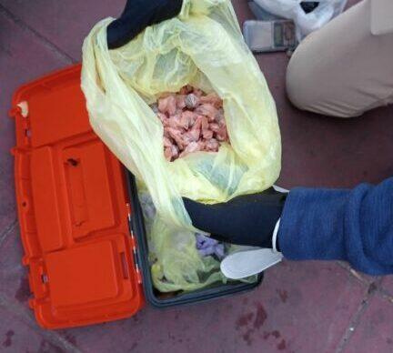 Cinturón Sur: Gendarmería secuestró 335 envoltorios con cocaína y marihuana 2