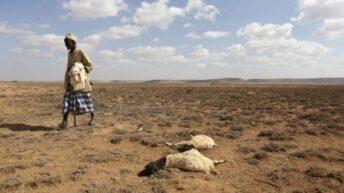 El Banco Mundial advierte que el cambio climático puede hacer migrar a 216 millones de personas
