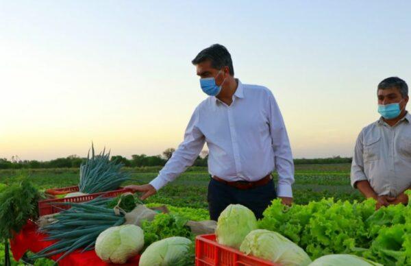 En el Día del Agricultor y Agricultora, Capitanich visitó campos en Colonia Rivadavia y Avia Terai 1
