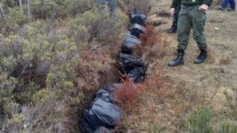 Gendarmería secuestró 9500 paquetes de cigarrillos valuado en 2.003.966,12 pesos