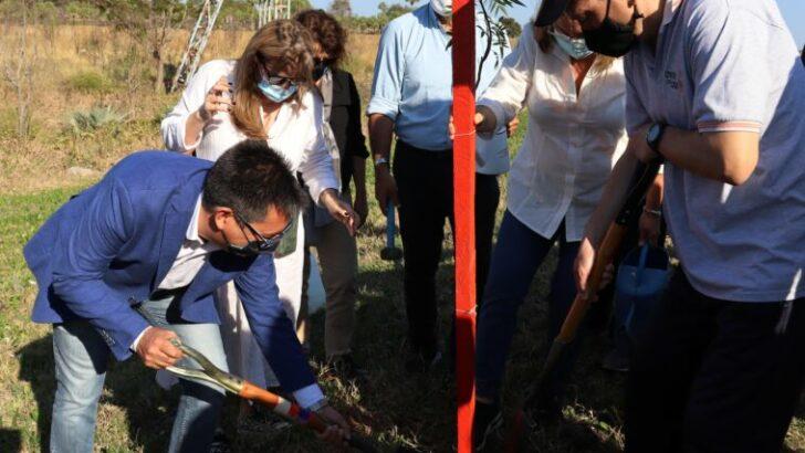 Gustavo Martínez revalorizó rol de Padres en la Ruta en una nueva plantación de árboles que simbolizan las vidas salvadas