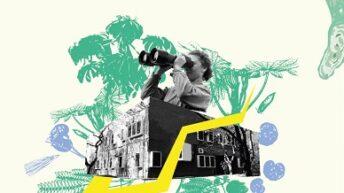 Festival Cataliza: extendieron el plazo de la convocatoria