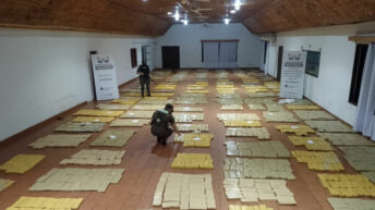 Misiones: Gendarmería decomisó más de  2.723 kilos de marihuana en el monte
